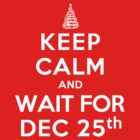 Keep Calm and Wait For Dec. 25th (DS) by rachaelroyalty
