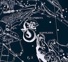 Delphinus and Eqvuleus Constellations by irinatsy