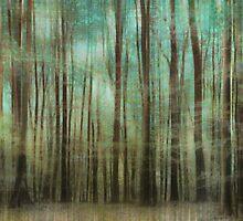 wood mystics by Iris Lehnhardt