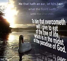Hear what the Spirit saith  Photographic Print