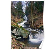 Downstream From Ozone Falls Poster
