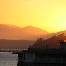 Sun:Seattle'06 by Fyrion