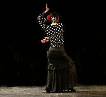 Toca Flamenco Black by bedoubleyou