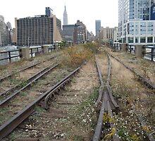 High Line, Abandoned Railyards Section, New York by lenspiro