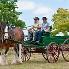 0974 Driving Miss Clancy by DavidsArt
