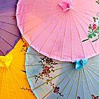 Umbrellas Oriented by Rob Atkinson