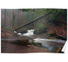 Moody Morning Mist Over Kitchen Creek Poster
