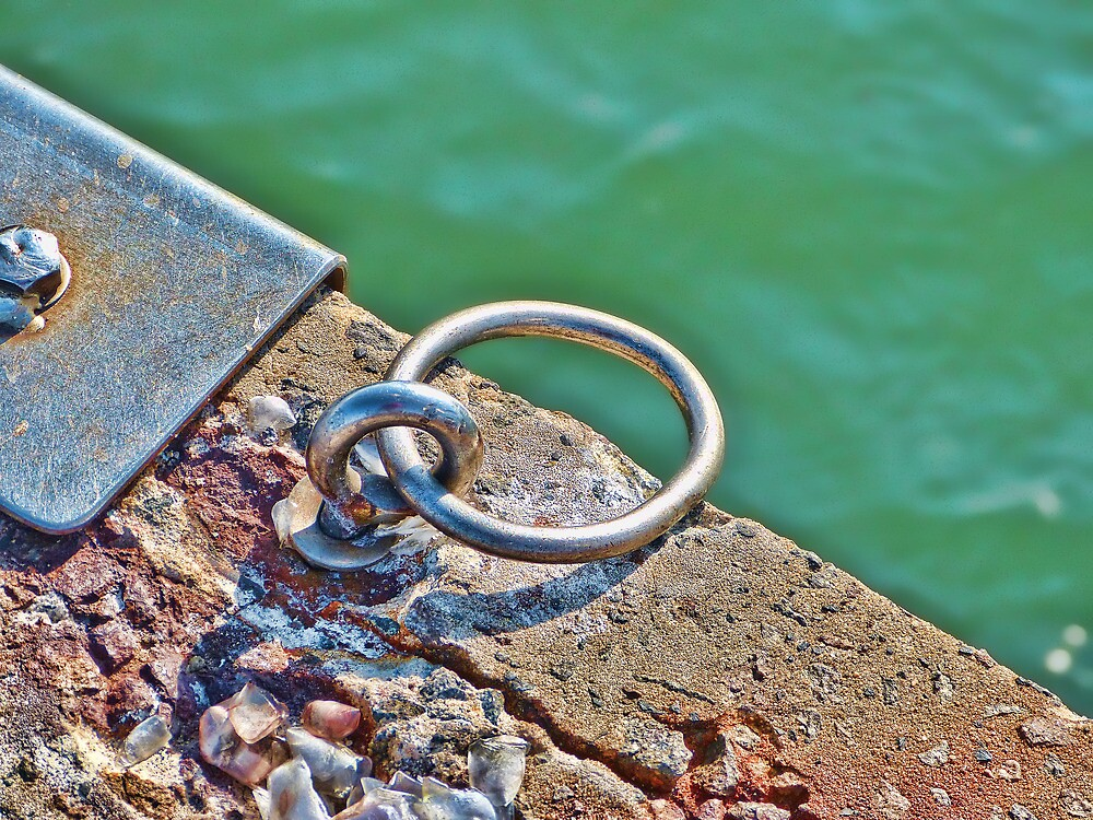 Boat Ring by Sharon Brown