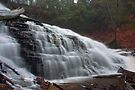 Early Spring Mist Over Mohawk Falls by Gene Walls