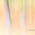 Trees - 3 - Impressions by Yannik Hay