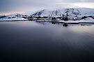 Norwegian Fjord  by fg-ottico