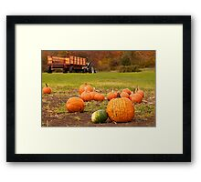The Picked Over Punkin Patch Framed Print