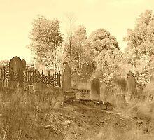 Graveyard in Tassie 1 by Jeffrey Sims