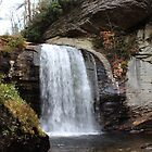*Looking Glass Falls, Brevard, NC* by DeeZ (D L Honeycutt)