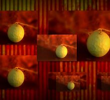 Rusty iron and Paddy Melons by myraj