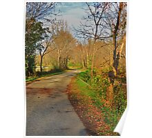 Late October Afternoon on Owl Creek Road Poster