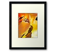 Wings of Aries Framed Print