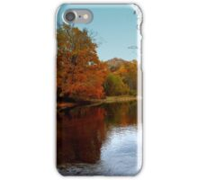 Pisgah National Forest Area iPhone Case/Skin