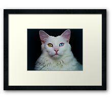 Angel Eyes 2 Framed Print