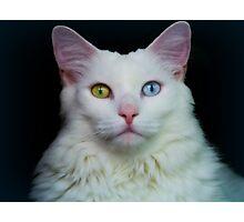 Angel Eyes 2 Photographic Print
