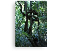 Elf Slippery Slide Canvas Print