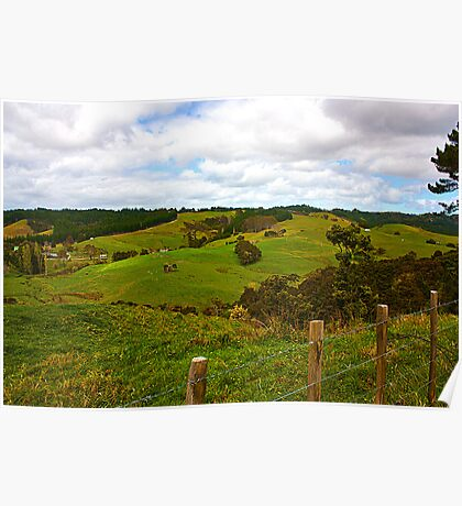 New Zealand Country Side Poster