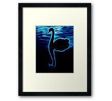 Black Swan at Twilight Framed Print