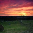Hay Bale Sunset by kcy011