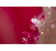 Jewel Crystal Photographic Print