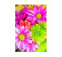 Burst Of Colorful Spring Flowers Art Print