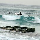 SURFS UP by springs