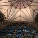 York Minster - Chapter House 2 by rsangsterkelly