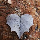 52/365 this heart is batty by LouJay