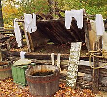 Laundry day by Penny Rinker