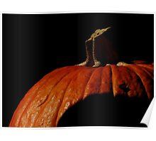 Pumpkin Extravaganza ~ Part Six Poster