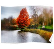 Autumn Tree in Tunbridge Wells  Poster