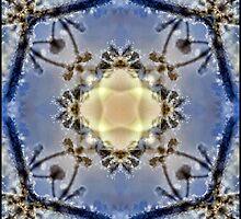 Snowy crystal by marina63