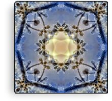 Snowy crystal Canvas Print