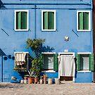 Blue House, Burano, Venice by Petr Svarc