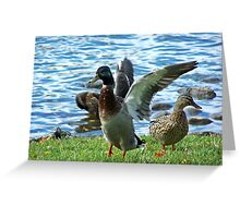 Shaking It Off Greeting Card