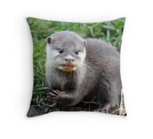 Baby European Small-clawed Otter Throw Pillow