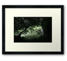 Out of the Mists of Time They Come Framed Print