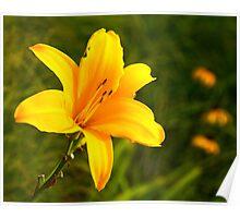 Flower Family Poster