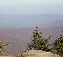 Mt. Mitchell views - Highest point in E. USA by JeffeeArt4u