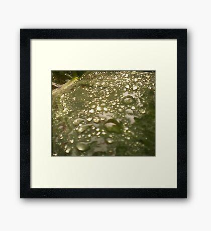 Water slope Framed Print