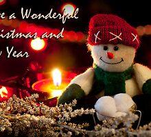 Ever Seen a Snowman's Snow Balls?! by OzzieBennett