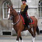 Kings Troop - Royal Horse Artillery by Colin Shepherd