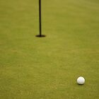 Golf Ball On Green by Henry Bird