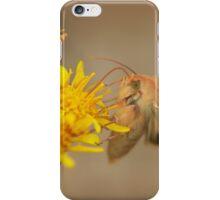 The hummingbird hawk moth iPhone Case/Skin