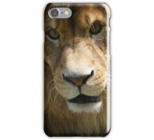 His Majesty the Kitty King iPhone Case/Skin